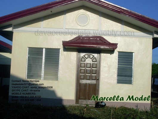 elenita heights subdivision davao marcella house and lot. davao houses for sale.