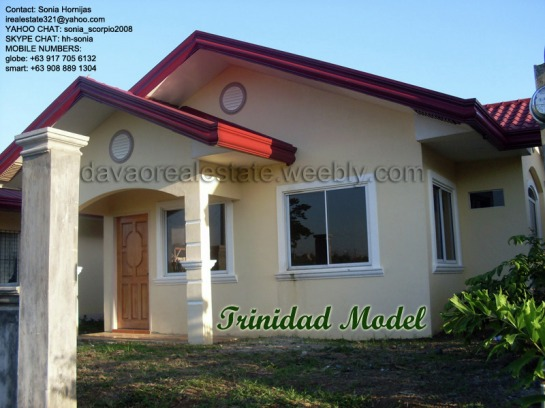 elenita heights subdivision davao trinidad house and lot. davao houses for sale.