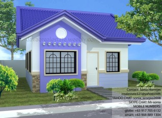 Platinum B. This affordable house and lot package at Grace Park Subdivision is a little similar to Platinum A, only smaller. This Davao home has 3 bedrooms and 1 toilet and bath. Avail this Pag-ibig housing.