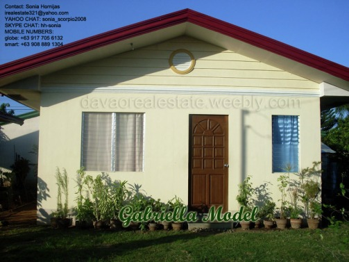elenita heights subdivision davao gabriella house and lot. davao houses for sale.