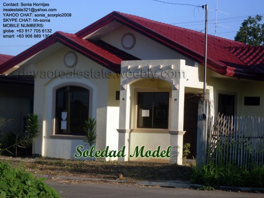 elenita heights subdivision davao soledad house and lot. davao houses for sale.